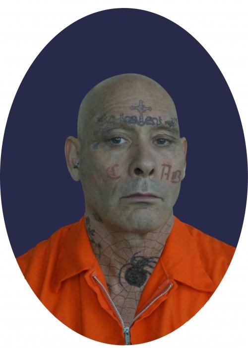 Prisoner_FnlMay17Sdr copy